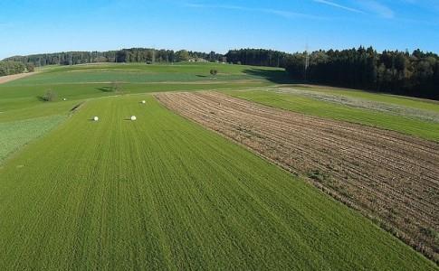 Campo a vista de dron