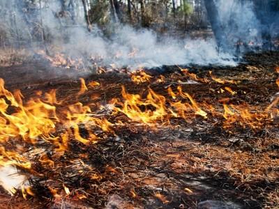 drones emergencia incendio