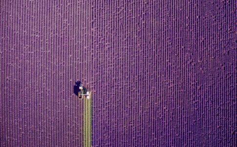 mejores fotos con drones