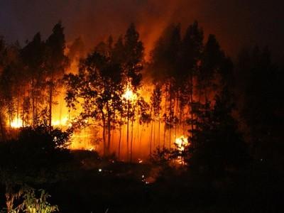 Detección incendios forestales drones
